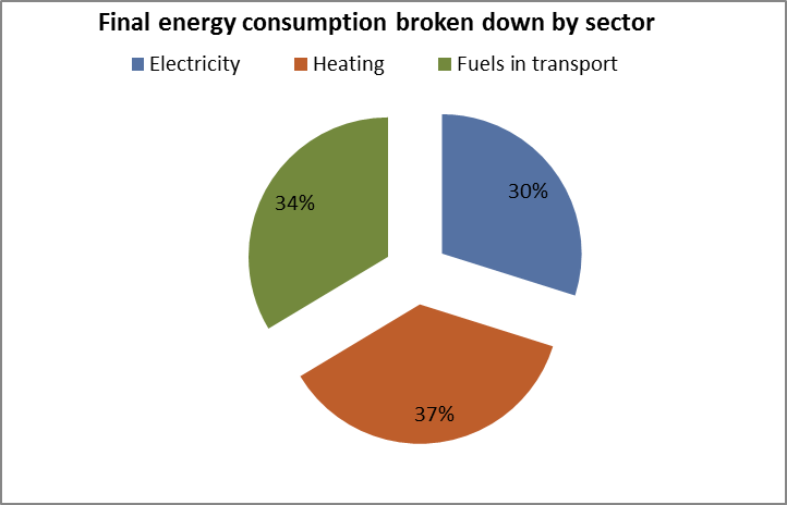Final energy consumption broken down by sector PT